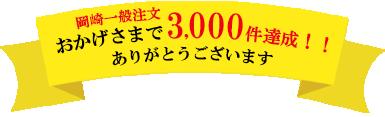 おかげさまで3000件達成!
